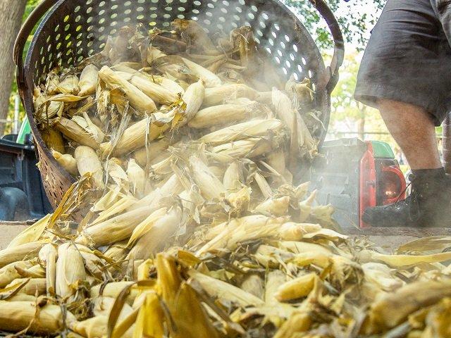 calendar-Sun-Prairie-Sweet-Corn-Festival-cr-Focal-Flame-Photography.jpg