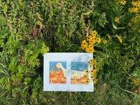 calendar-StoryWalk-cabrera-4x3.jpg