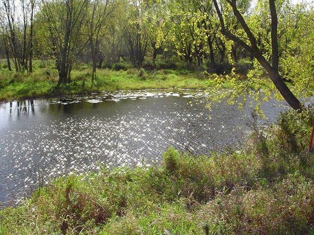 calendar-Wisconsin-River.jpg