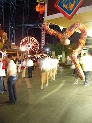 planski-carnival082708a.jpg