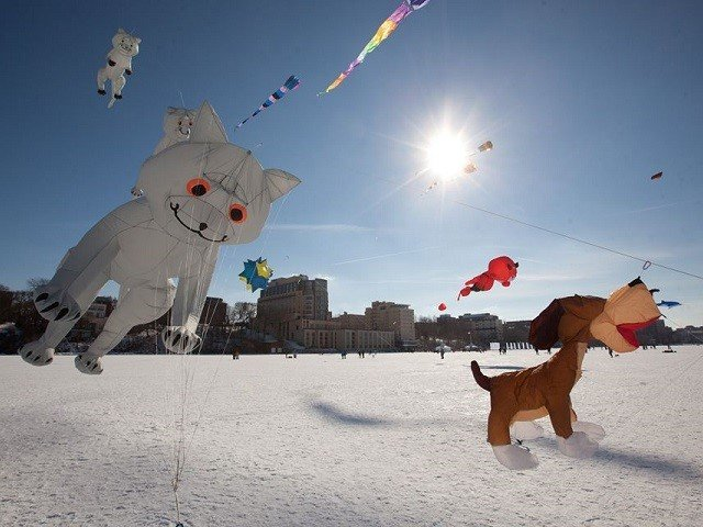 calendar-Frozen-Assets-Kites.jpg