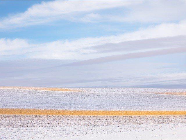 calendar-Hibernating-Farmland-Eloisa-Callender-photomidwest-sms.jpg