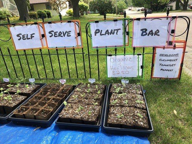 calendar-Self-Serve-Plant-Bar.jpg