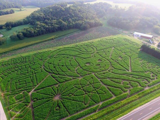 calendar-Schrodingers-Cat-Corn-Maze-2021-cr-Treinen-Farm-ic.jpg